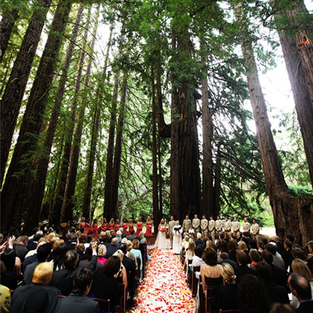 Sanman Productions San Francisco Event Planning And Wedding By Sanford Marshall